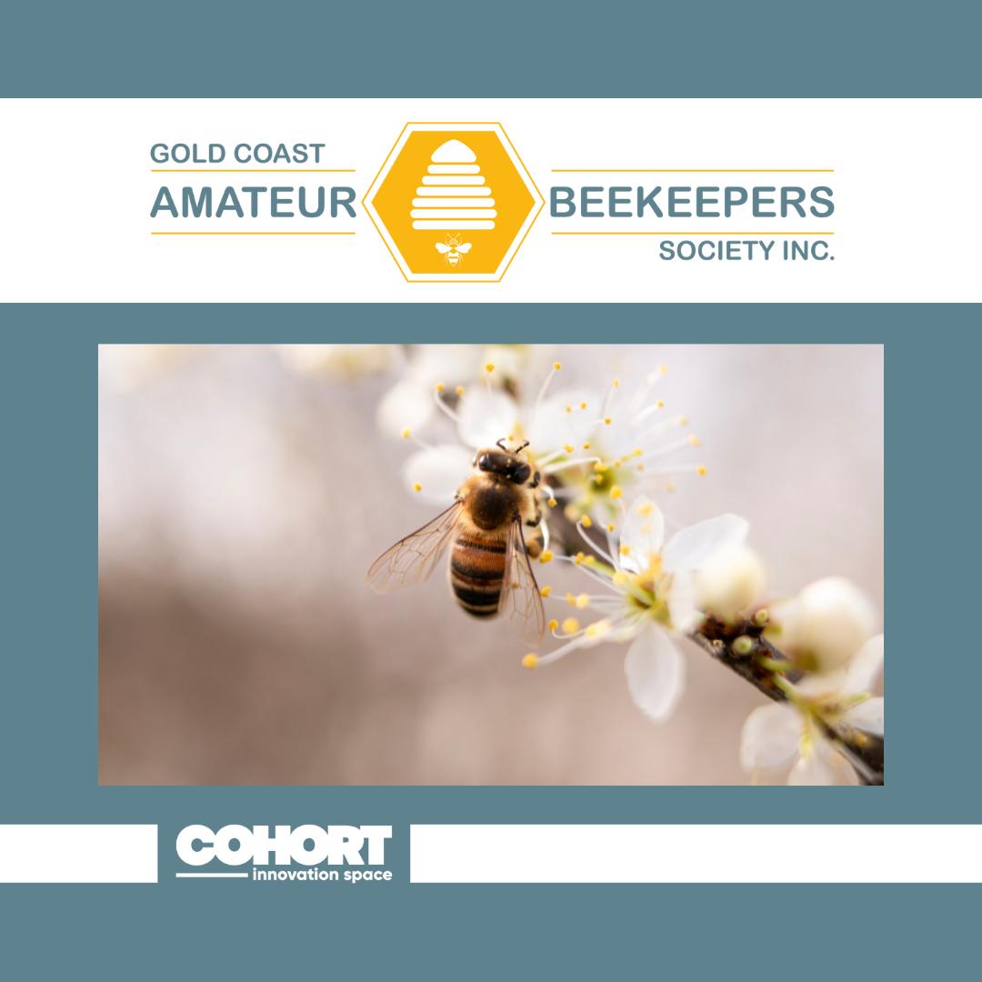 Gold Coast Amateur Beekeepers Society
